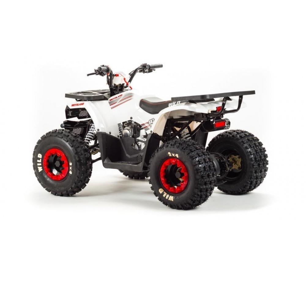 Квадроцикл Motoland Wild 125